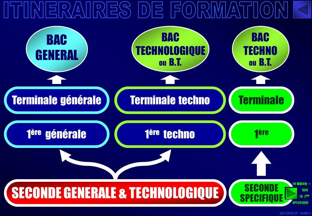 APRES BAC GENERAL - DIAPO 154 SECONDE GT - DIAPO 155 2/3