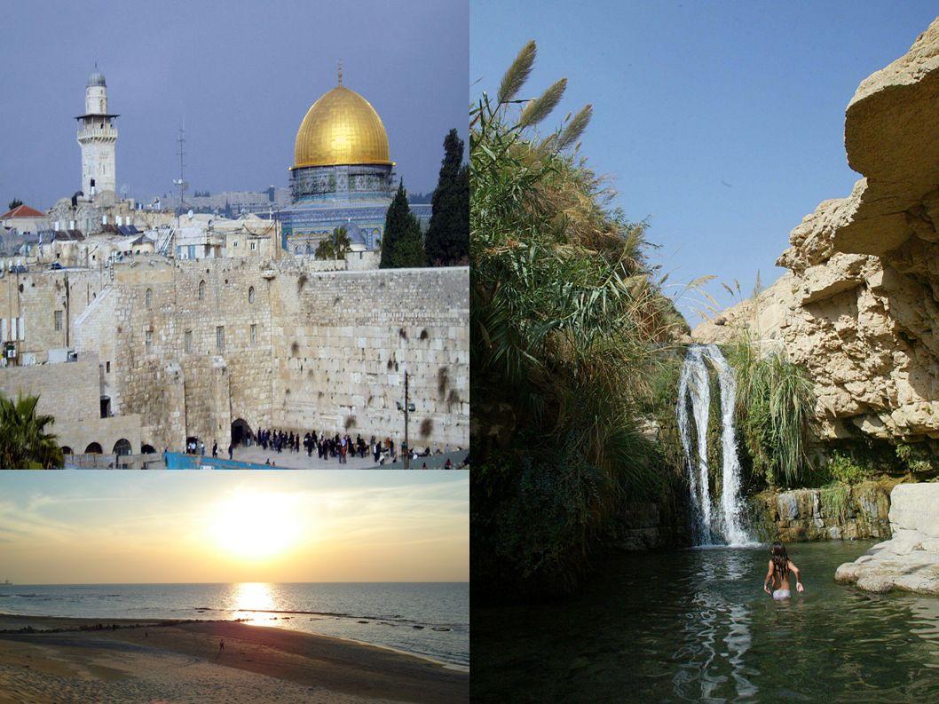 Un alsacien part en vacances en Israël avec sa femme et sa belle-mère.