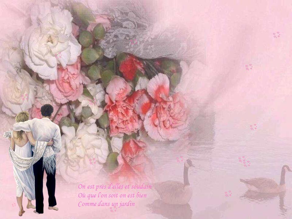 Une douceur dans les yeux une chaleur qui ne peut Que nous rendre amoureux Musique: Toutes les femmes sont belles Par Franck Michael Images sur le net