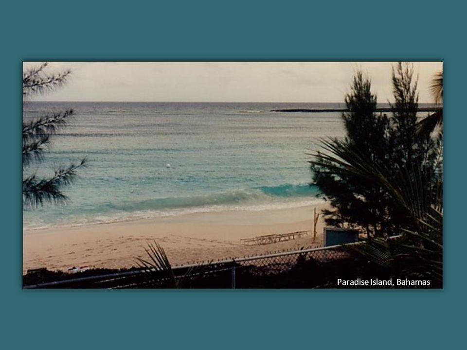 Écrire liberté sur le bord d'une plage, c'est déjà avoir la liberté de l'écrire. Même si la mer efface ce mot : la liberté demeure. - Jean-Michel Wyl