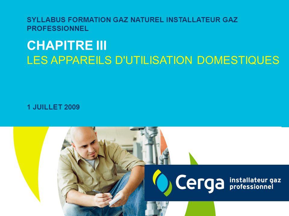 CHAPITRE III LES APPAREILS D'UTILISATION DOMESTIQUES SYLLABUS FORMATION GAZ NATUREL INSTALLATEUR GAZ PROFESSIONNEL 1 JUILLET 2009