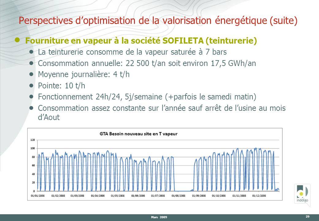 Mars 2009 29 Fourniture en vapeur à la société SOFILETA (teinturerie) La teinturerie consomme de la vapeur saturée à 7 bars Consommation annuelle: 22