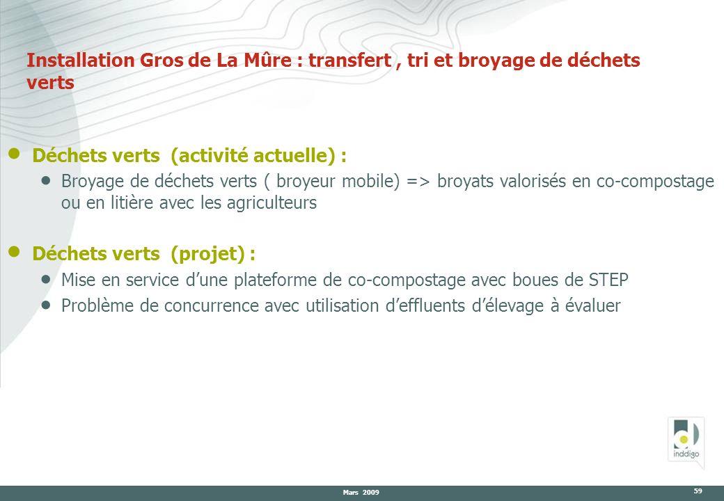 Mars 2009 59 Installation Gros de La Mûre : transfert, tri et broyage de déchets verts Déchets verts (activité actuelle) : Broyage de déchets verts (