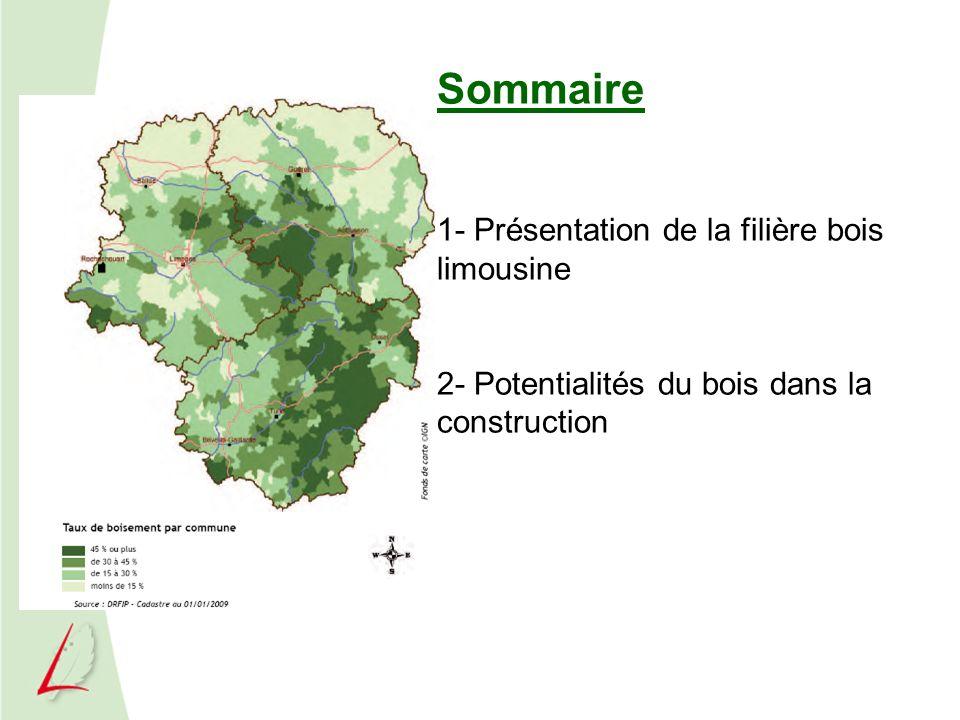 Présentation de la Filière Forêt Bois en Limousin Plus de 2 000 entreprises 9 000 emplois directs et 28 000 indirects 3,9 % de lemploi salarié en Limousin soit la part régionale la plus importante (INSEE Limousin) Un potentiel de valorisation supplémentaire estimé à 700 000 m3 14 millions deuros engagés par la Région depuis 2007