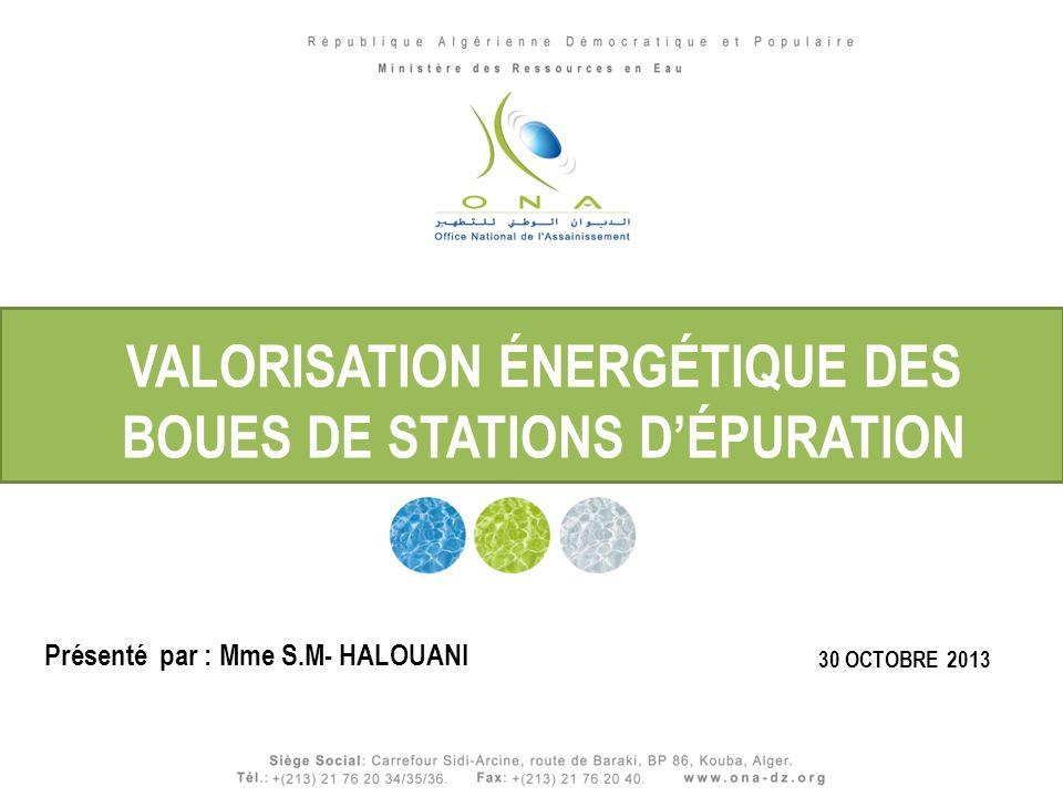 Titre du Document Titre du document 30 OCTOBRE 2013 VALORISATION ÉNERGÉTIQUE DES BOUES DE STATIONS DÉPURATION Présenté par : Mme S.M- HALOUANI