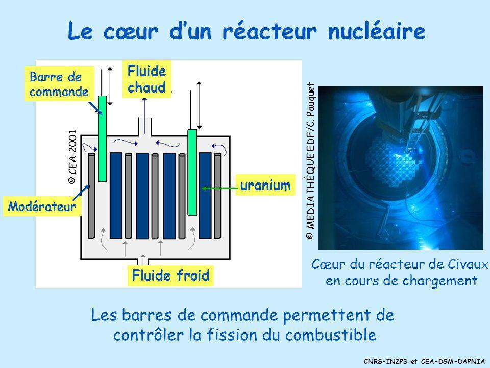 CNRS-IN2P3 et CEA-DSM-DAPNIA Gestion des déchets nucléaires