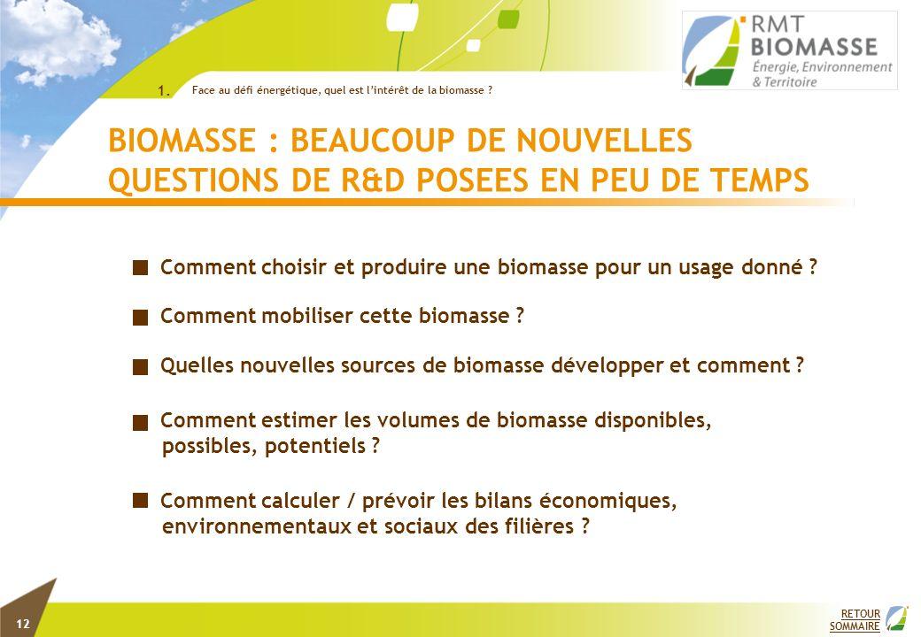 Comment choisir et produire une biomasse pour un usage donné ? Comment mobiliser cette biomasse ? Quelles nouvelles sources de biomasse développer et