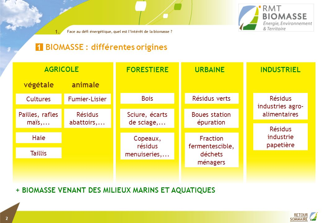 Fraction fermentescible, déchets ménagers Résidus industries agro- alimentaires Bois Taillis Haie Pailles, rafles maïs,... Cultures BIOMASSE : différe
