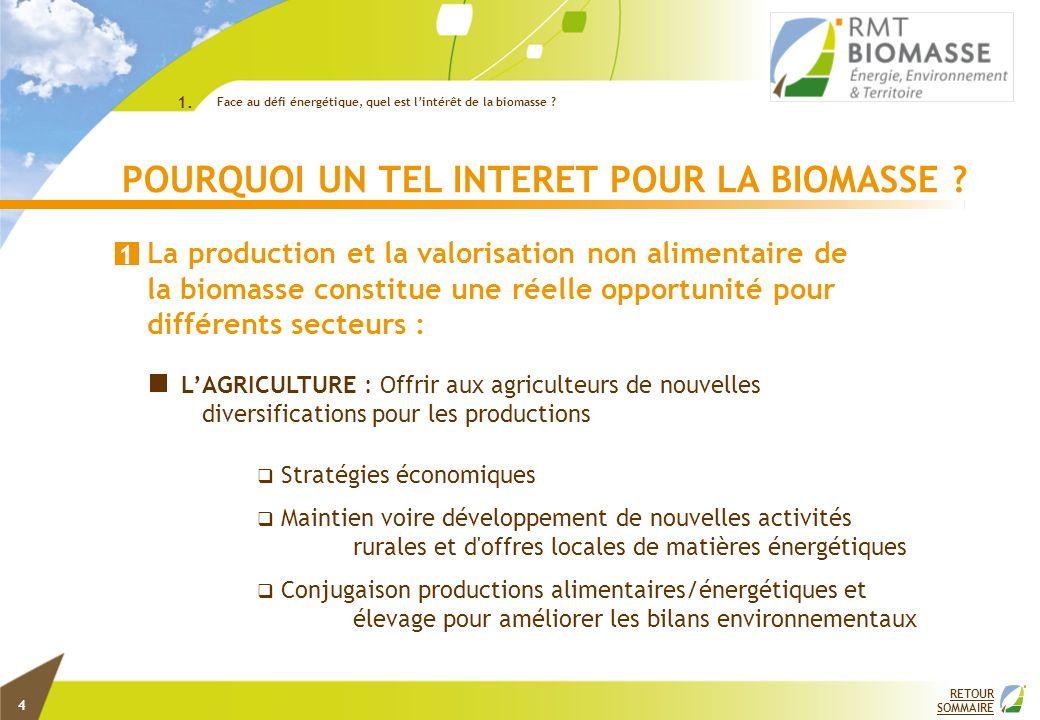 POURQUOI UN TEL INTERET POUR LA BIOMASSE ? La production et la valorisation non alimentaire de la biomasse constitue une réelle opportunité pour diffé