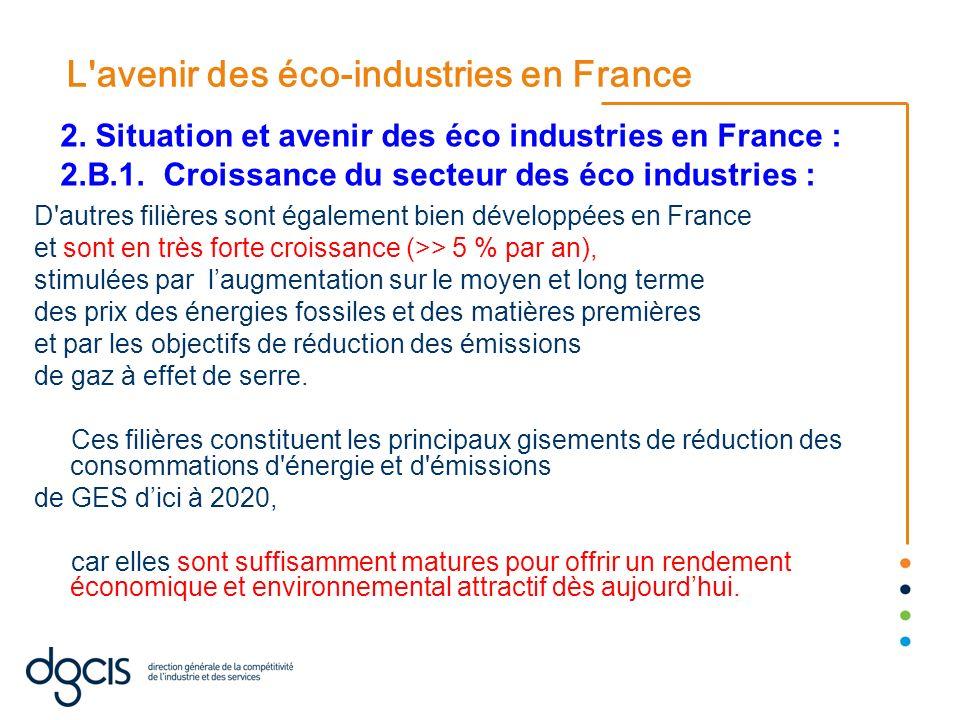 L'avenir des éco-industries en France D'autres filières sont également bien développées en France et sont en très forte croissance (>> 5 % par an), st