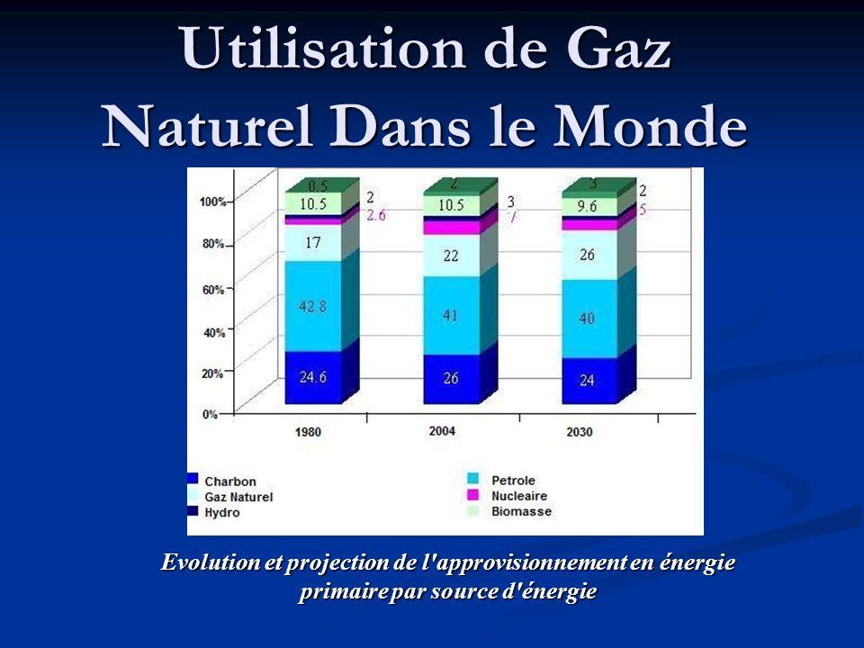 Utilisation de Gaz Naturel Dans le Monde Evolution et projection de l'approvisionnement en énergie primaire par source d'énergie