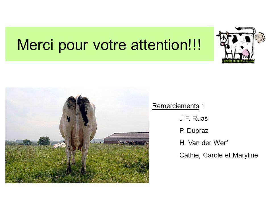 Merci pour votre attention!!! Remerciements : J-F. Ruas P. Dupraz H. Van der Werf Cathie, Carole et Maryline