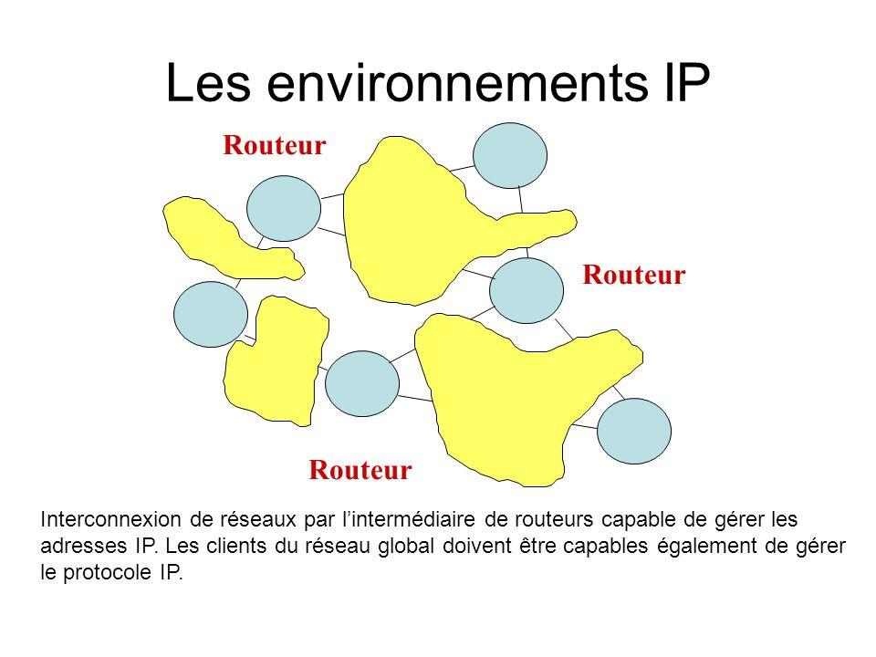 Les environnements IP Routeur Interconnexion de réseaux par lintermédiaire de routeurs capable de gérer les adresses IP.