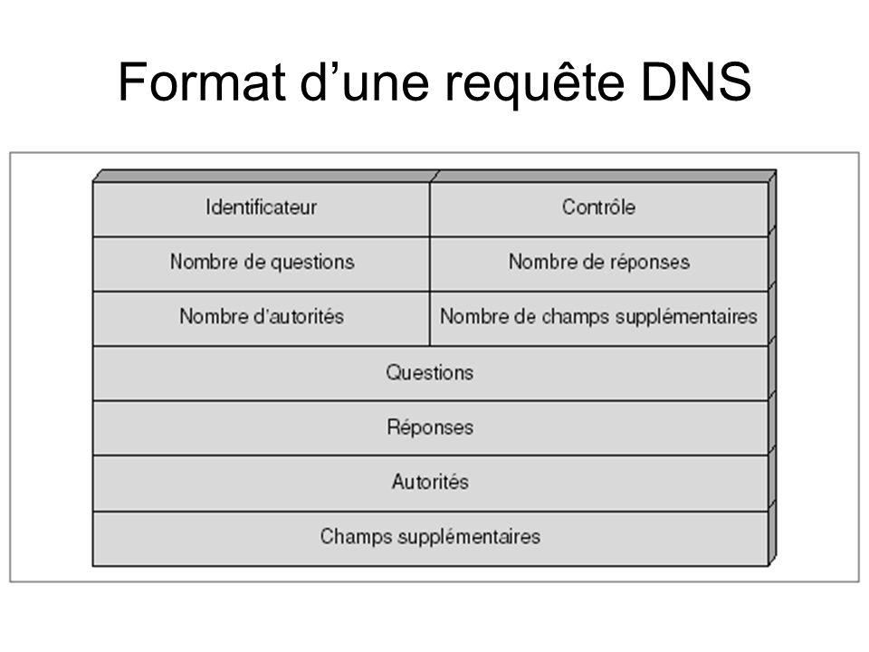 Format dune requête DNS