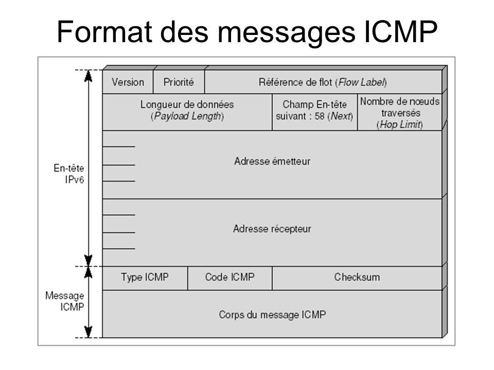 Format des messages ICMP