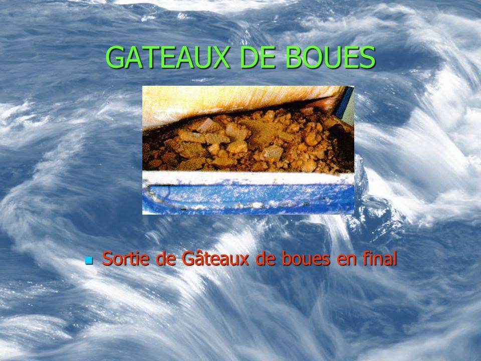 GATEAUX DE BOUES Sortie de Gâteaux de boues en final Sortie de Gâteaux de boues en final