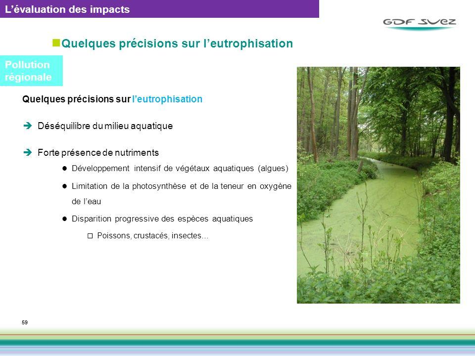 Quelques précisions sur leutrophisation 59 Quelques précisions sur leutrophisation Déséquilibre du milieu aquatique Forte présence de nutriments Dével