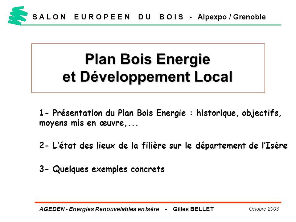 AGEDEN - Energies Renouvelables en Isère - Gilles BELLET Octobre 2003 S A L O N E U R O P E E N D U B O I S - Alpexpo / Grenoble Plan Bois Energie et