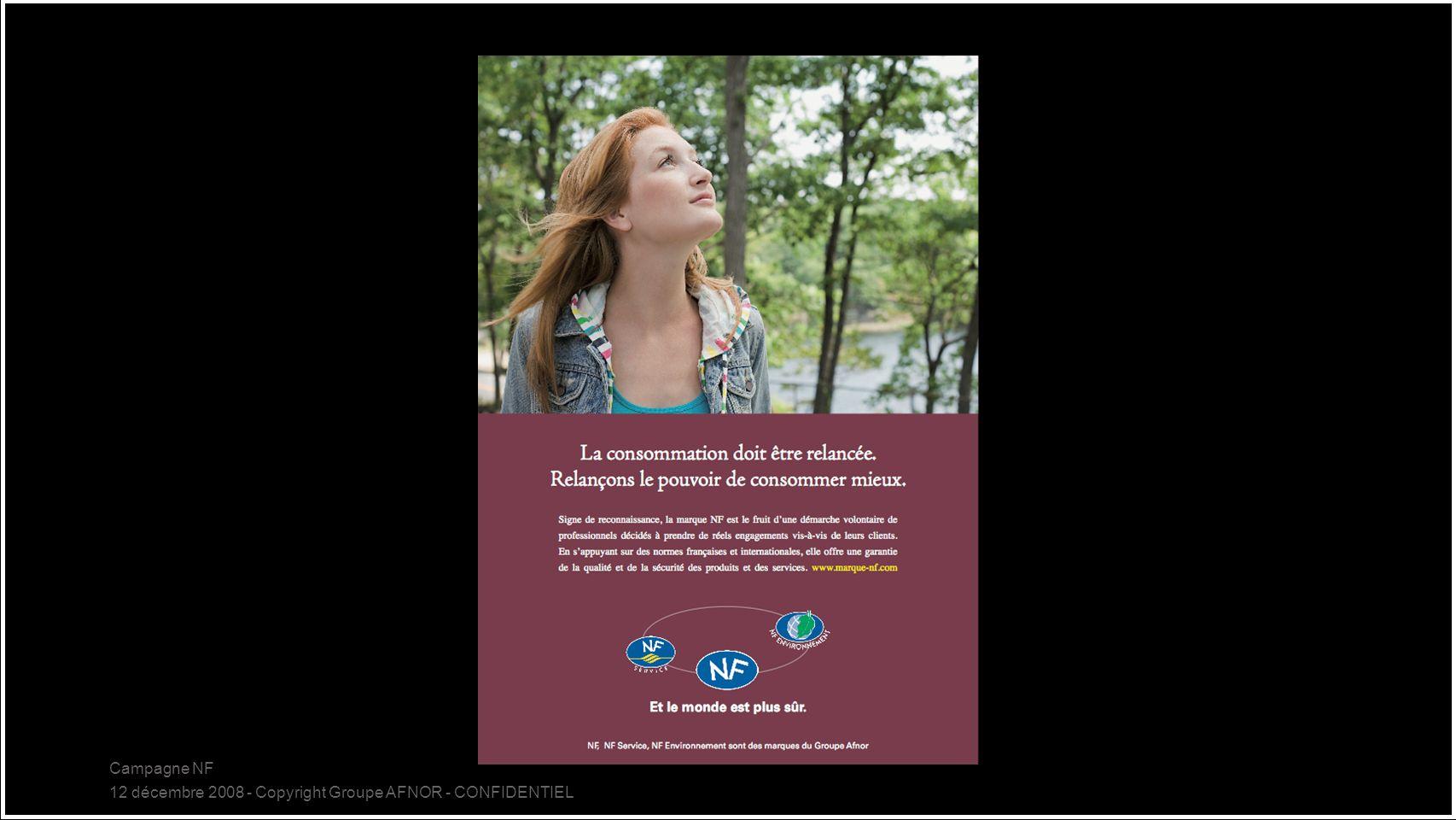 Campagne NF 12 décembre 2008 - Copyright Groupe AFNOR - CONFIDENTIEL 17