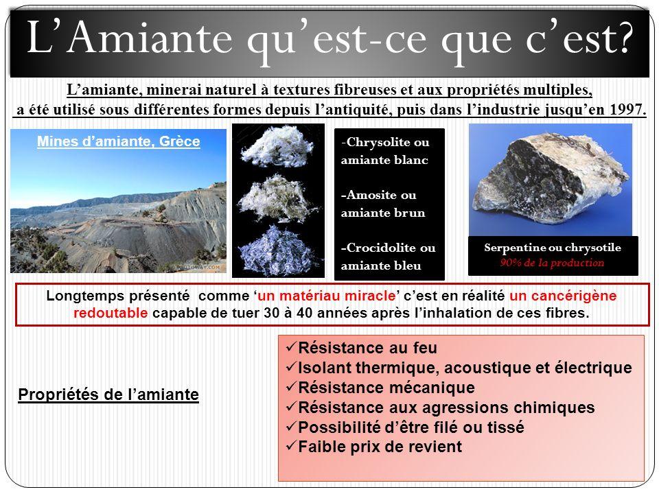 Lamiante, minerai naturel à textures fibreuses et aux propriétés multiples, a été utilisé sous différentes formes depuis lantiquité, puis dans lindustrie jusquen 1997.