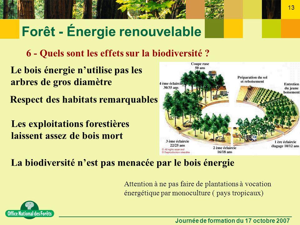 Journée de formation du 17 octobre 2007 12 Forêt - Énergie renouvelable 5 - La combustion du bois nest-elle pas une source de pollution ? Le bois a un