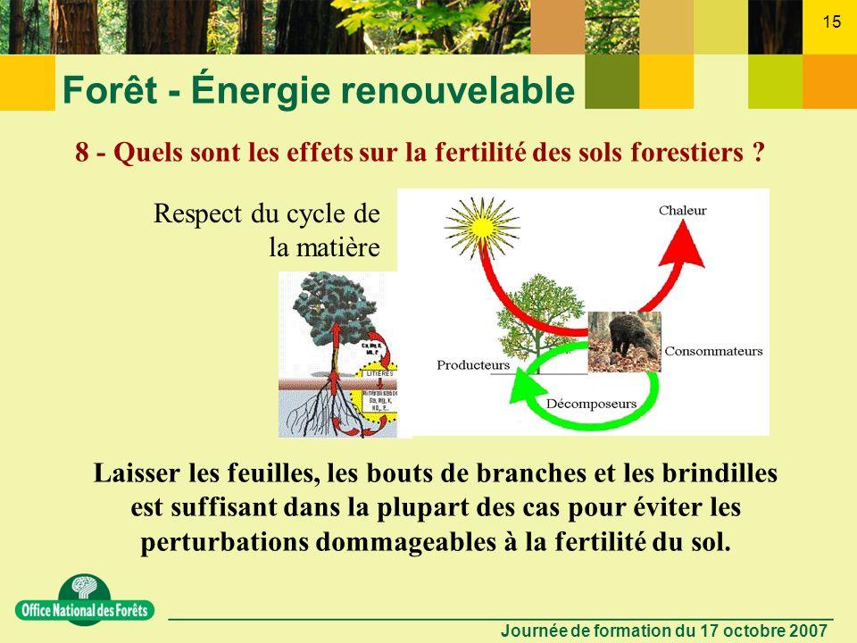 Journée de formation du 17 octobre 2007 14 Forêt - Énergie renouvelable 7 - Les bénéfices du bois énergie ne cachent-ils pas une forte consommation in