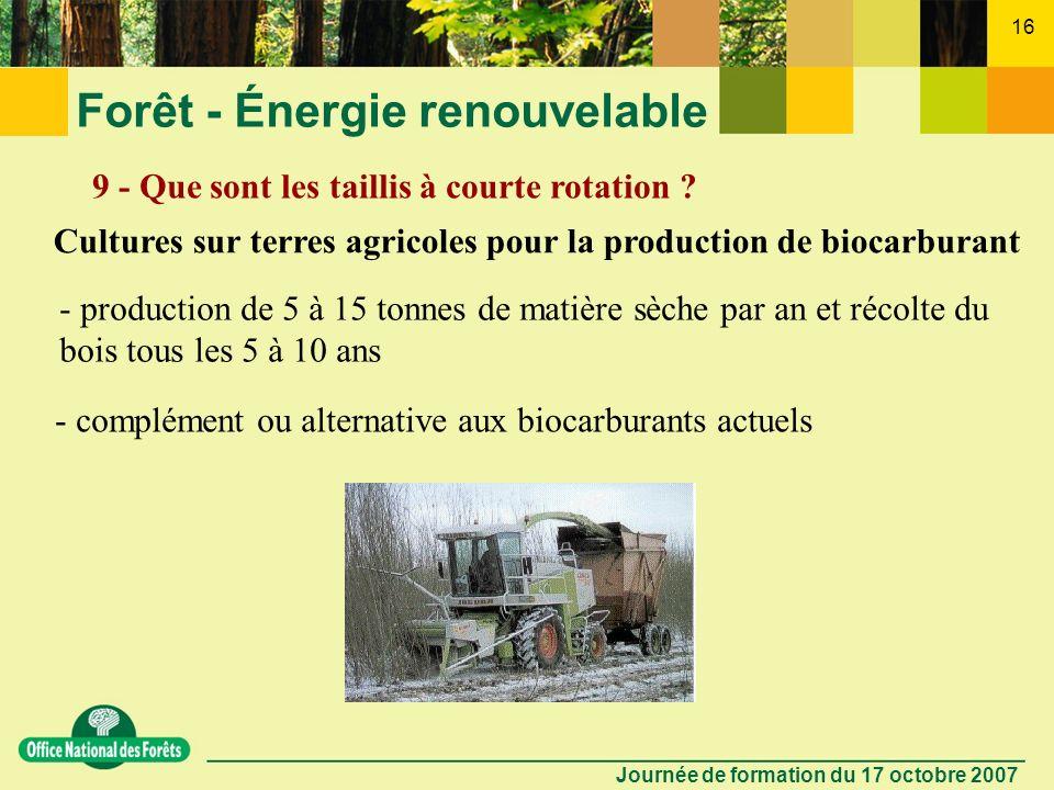Journée de formation du 17 octobre 2007 15 Forêt - Énergie renouvelable 8 - Quels sont les effets sur la fertilité des sols forestiers ? Respect du cy