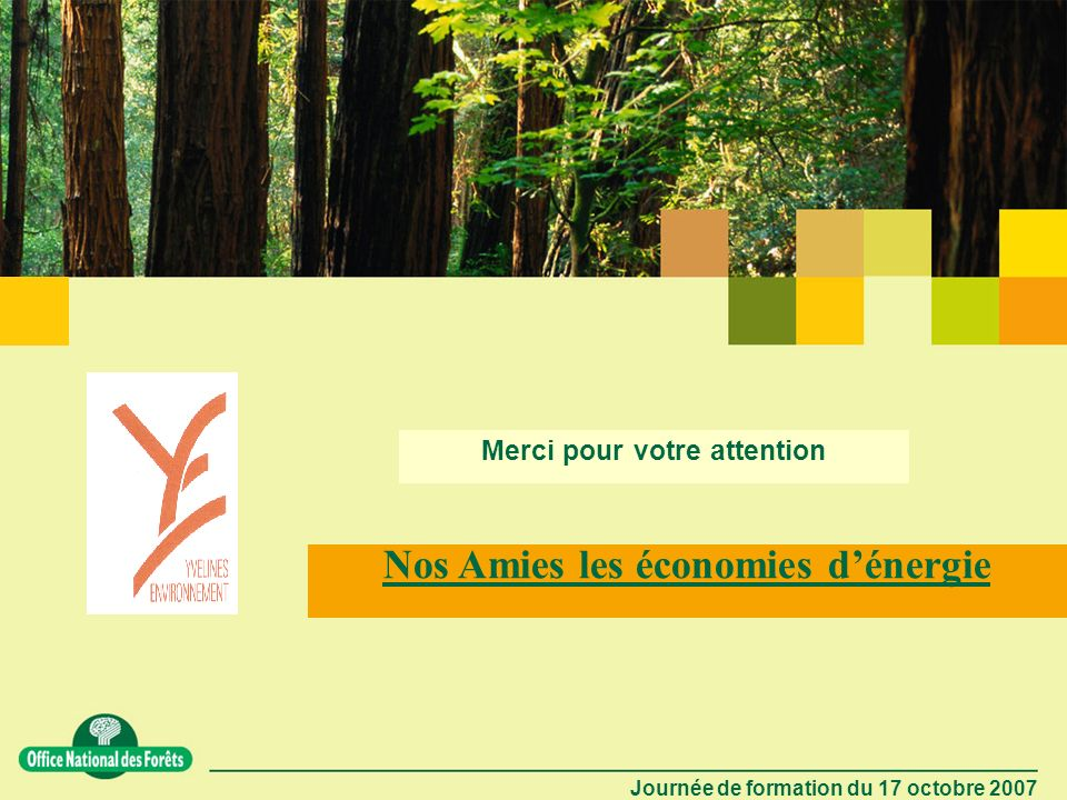 Journée de formation du 17 octobre 2007 20 Forêt - Énergie renouvelable LE BOIS ÉNERGIE La plus ancienne source dénergie a de lavenir.