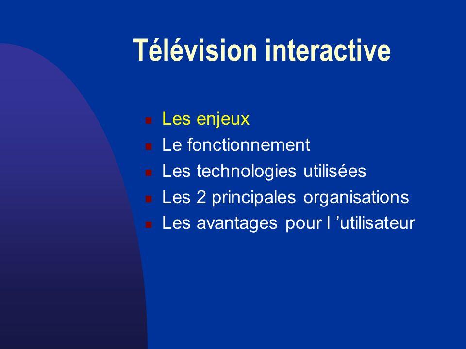 la télévision interactive Les enjeux Des milliards dépensés - dans les télécommunications et réseaux - par les grandes compagnies du multimédia - par les constructeurs de terminaux - pour les systèmes d exploitation