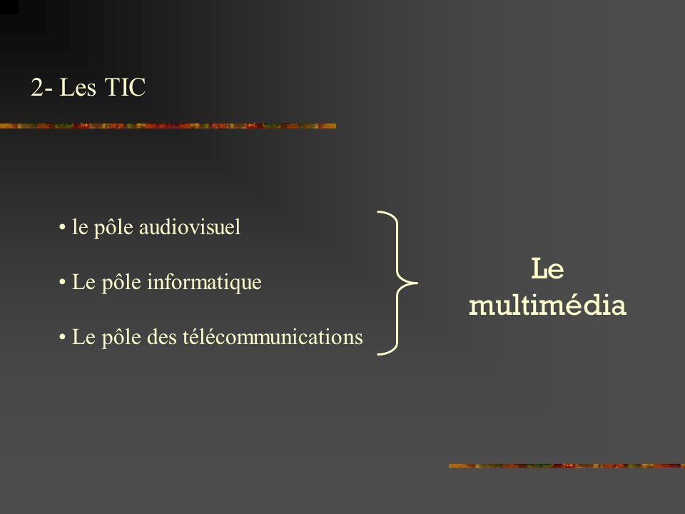 2- Les TIC Le multimédia le pôle audiovisuel Le pôle informatique Le pôle des télécommunications