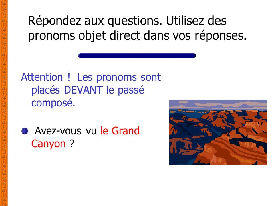 Répondez aux questions. Utilisez des pronoms objet direct dans vos réponses. Attention ! Les pronoms sont placés DEVANT le passé composé. Avez-vous vu