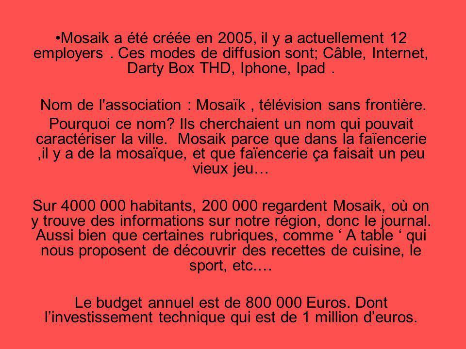 Mosaik a été créée en 2005, il y a actuellement 12 employers. Ces modes de diffusion sont; Câble, Internet, Darty Box THD, Iphone, Ipad. Nom de l'asso