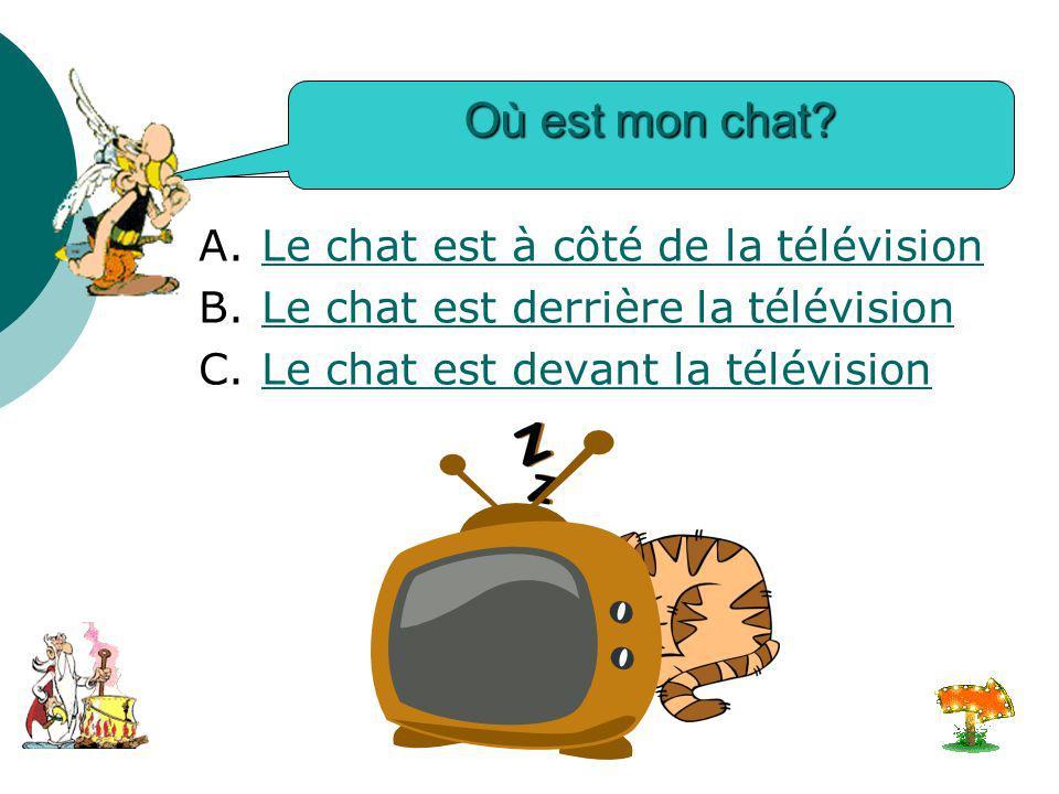 Où est mon chat.A. Le chat est à côté de la télévisionLe chat est à côté de la télévision B.