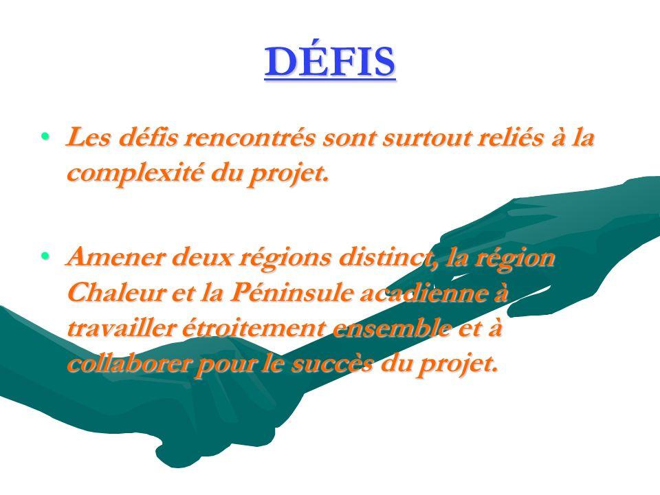 DÉFIS Les défis rencontrés sont surtout reliés à la complexité du projet.Les défis rencontrés sont surtout reliés à la complexité du projet.