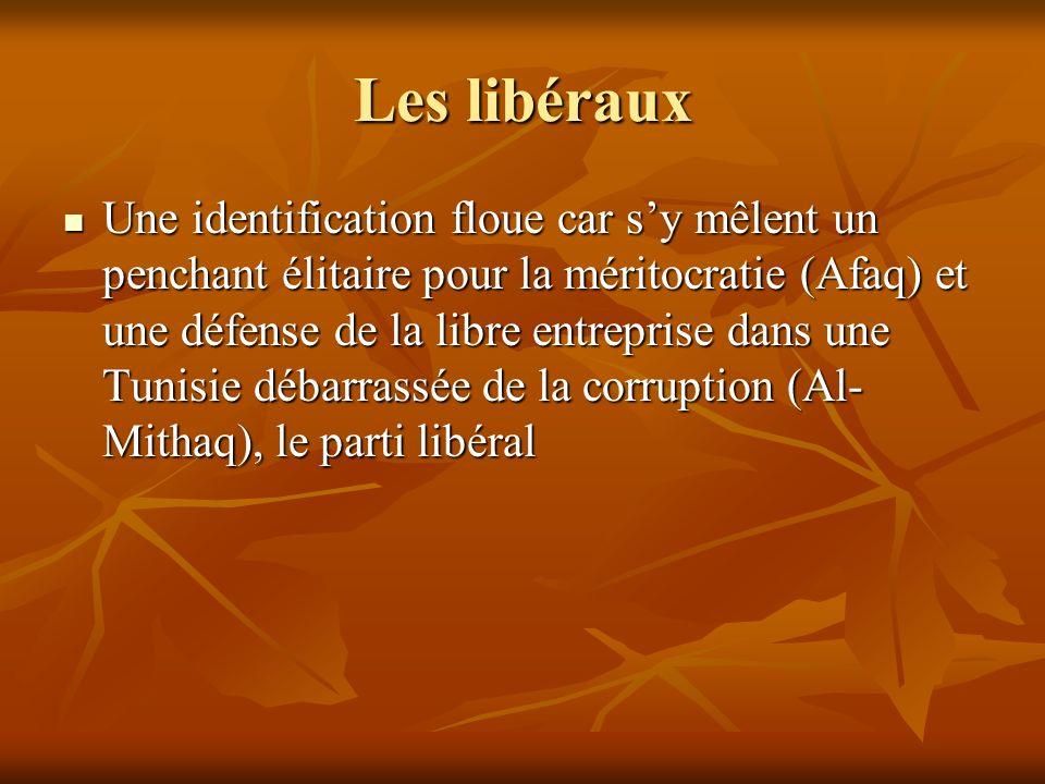 Les libéraux Une identification floue car sy mêlent un penchant élitaire pour la méritocratie (Afaq) et une défense de la libre entreprise dans une Tu