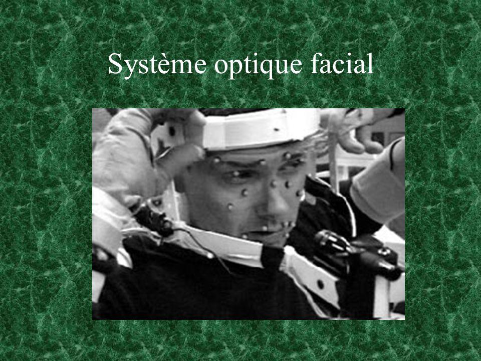 Système optique facial