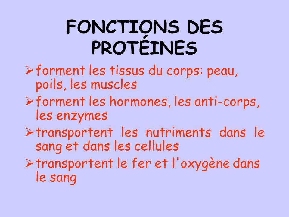 FONCTIONS DES PROTÉINES forment les tissus du corps: peau, poils, les muscles forment les hormones, les anti-corps, les enzymes transportent les nutriments dans le sang et dans les cellules transportent le fer et l oxygène dans le sang