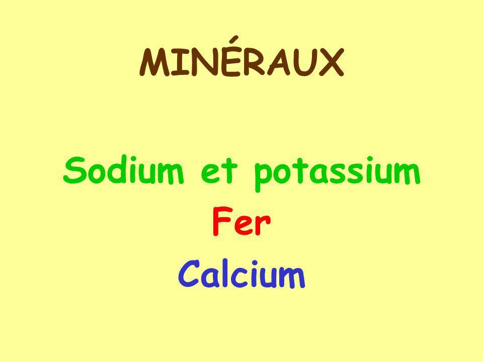 MINÉRAUX Sodium et potassium Fer Calcium