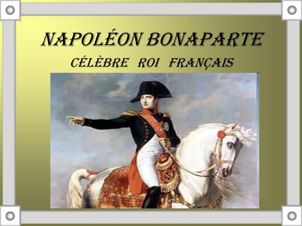 NAPOLÉON BONAPARTE CÉLÈBRE ROI FRANÇAIS