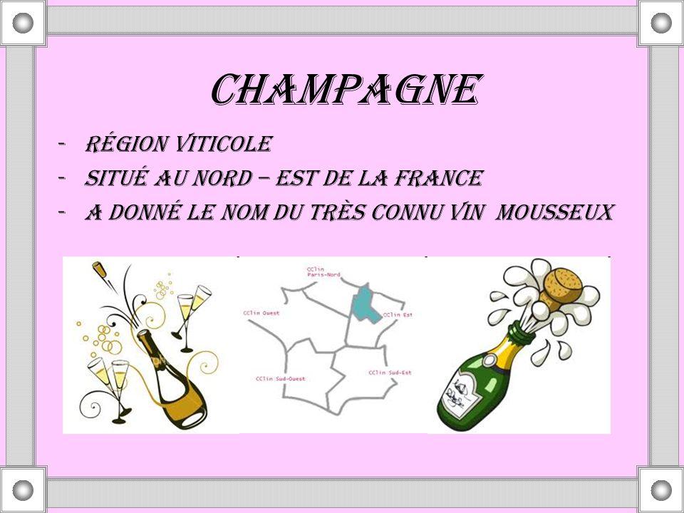 CHAMPAGNE -RÉGION VITICOLE -SITUÉ AU NORD – EST DE LA FRANCE -A DONNÉ LE NOM DU TRÈS CONNU VIN MOUSSEUX
