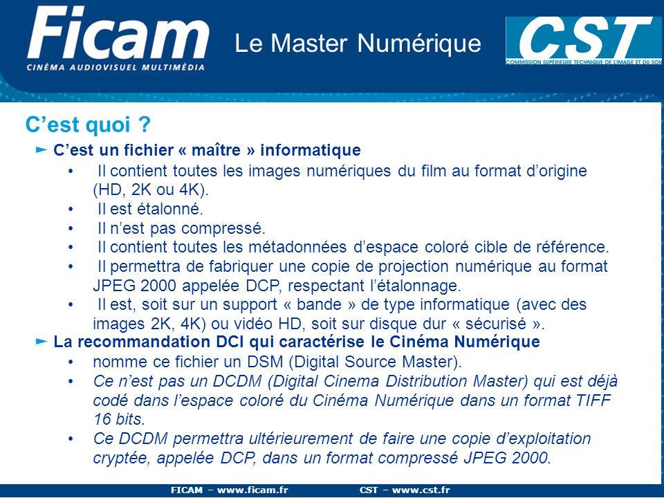 FICAM – www.ficam.fr CST – www.cst.fr Le Master Numérique Cest quoi ? Cest un fichier « maître » informatique Il contient toutes les images numériques