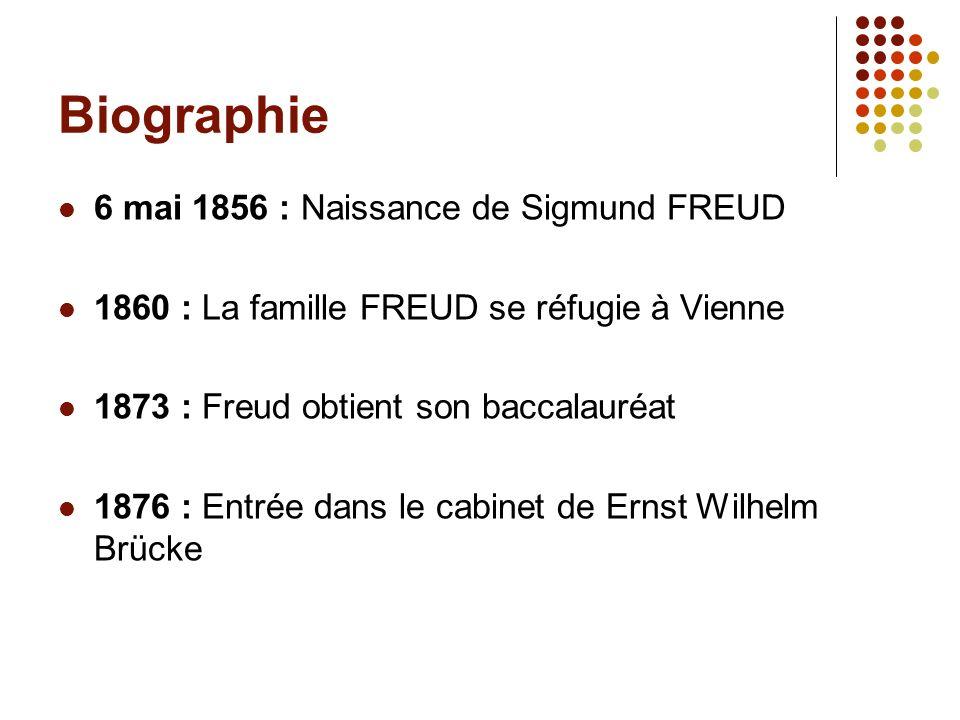 Biographie 6 mai 1856 : Naissance de Sigmund FREUD 1860 : La famille FREUD se réfugie à Vienne 1873 : Freud obtient son baccalauréat 1876 : Entrée dan