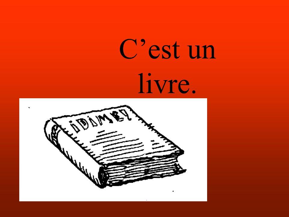 Cest un livre.