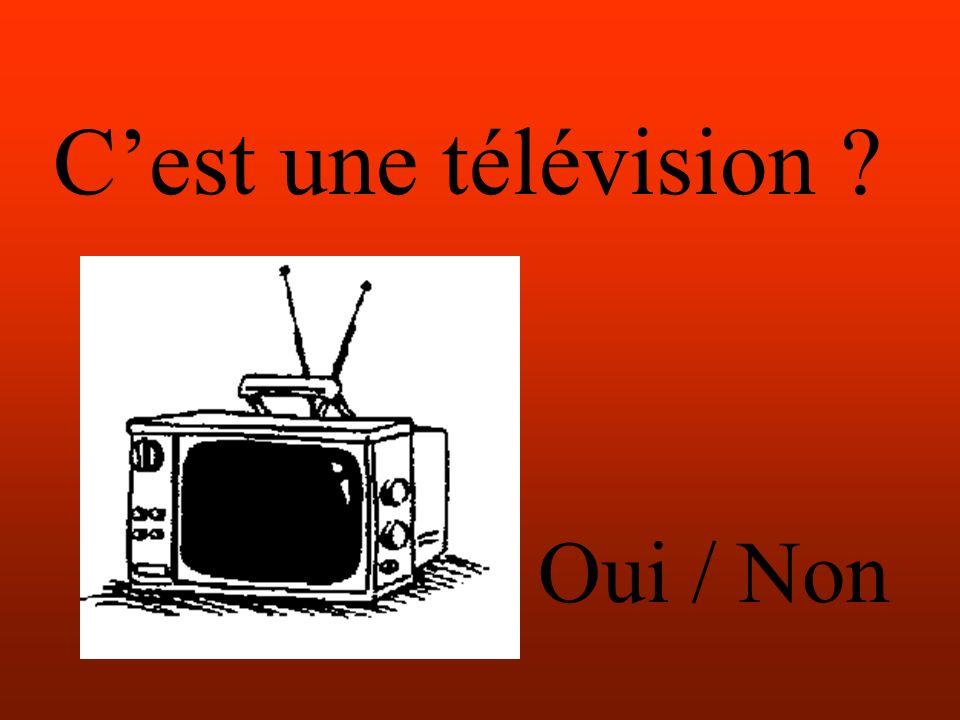 Cest une télévision Oui / Non