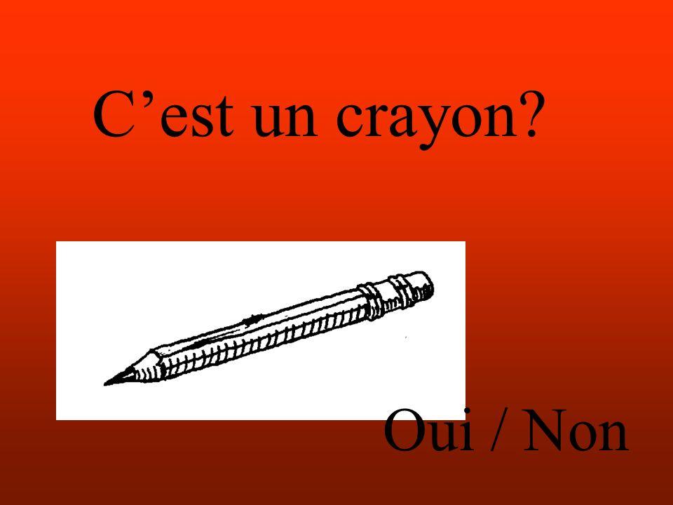 Cest un crayon Oui / Non
