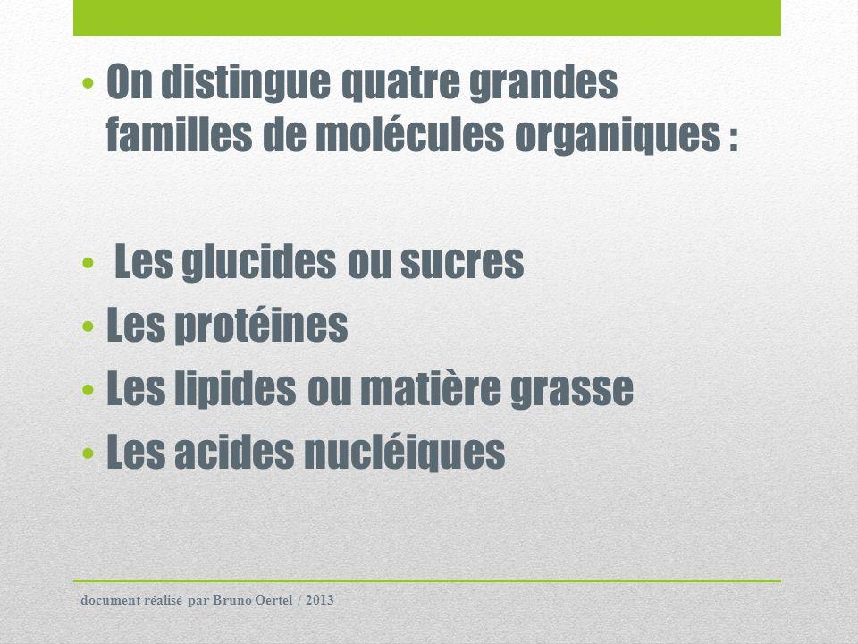 On distingue quatre grandes familles de molécules organiques : Les glucides ou sucres Les protéines Les lipides ou matière grasse Les acides nucléique