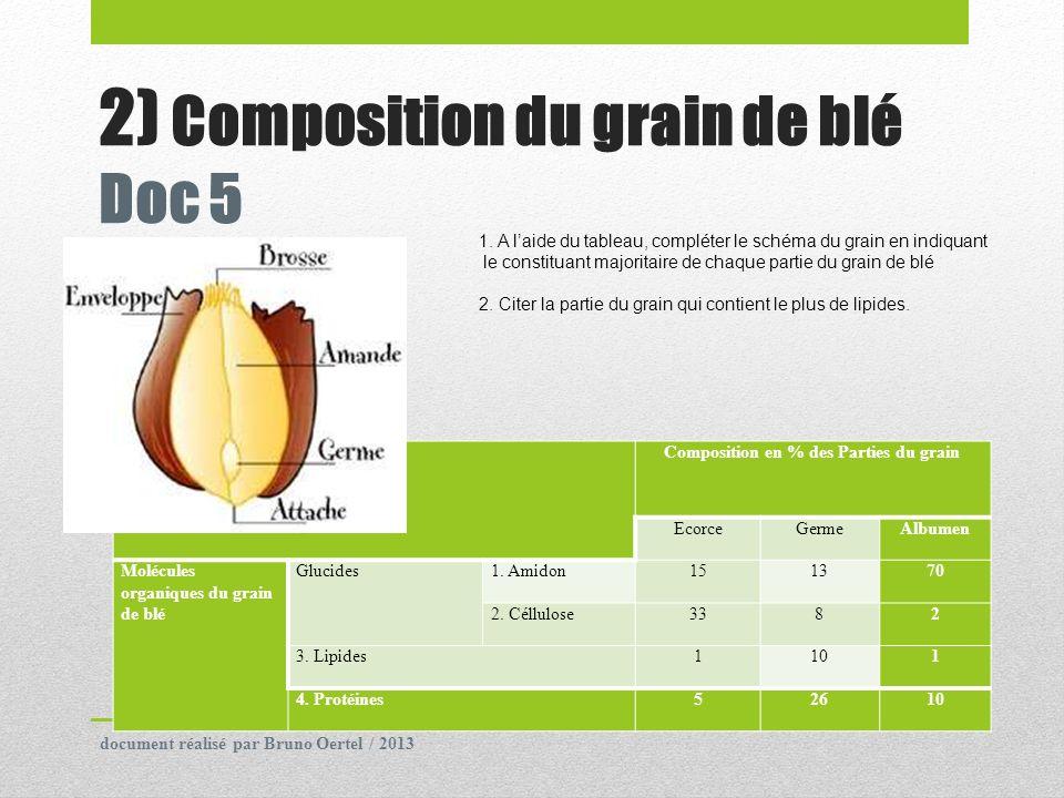 2) Composition du grain de blé Doc 5 Composition en % des Parties du grain EcorceGermeAlbumen Molécules organiques du grain de blé Glucides1. Amidon15