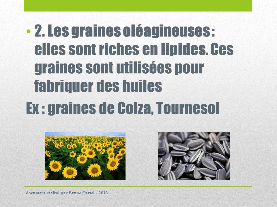 2. Les graines oléagineuses : elles sont riches en lipides. Ces graines sont utilisées pour fabriquer des huiles Ex : graines de Colza, Tournesol docu