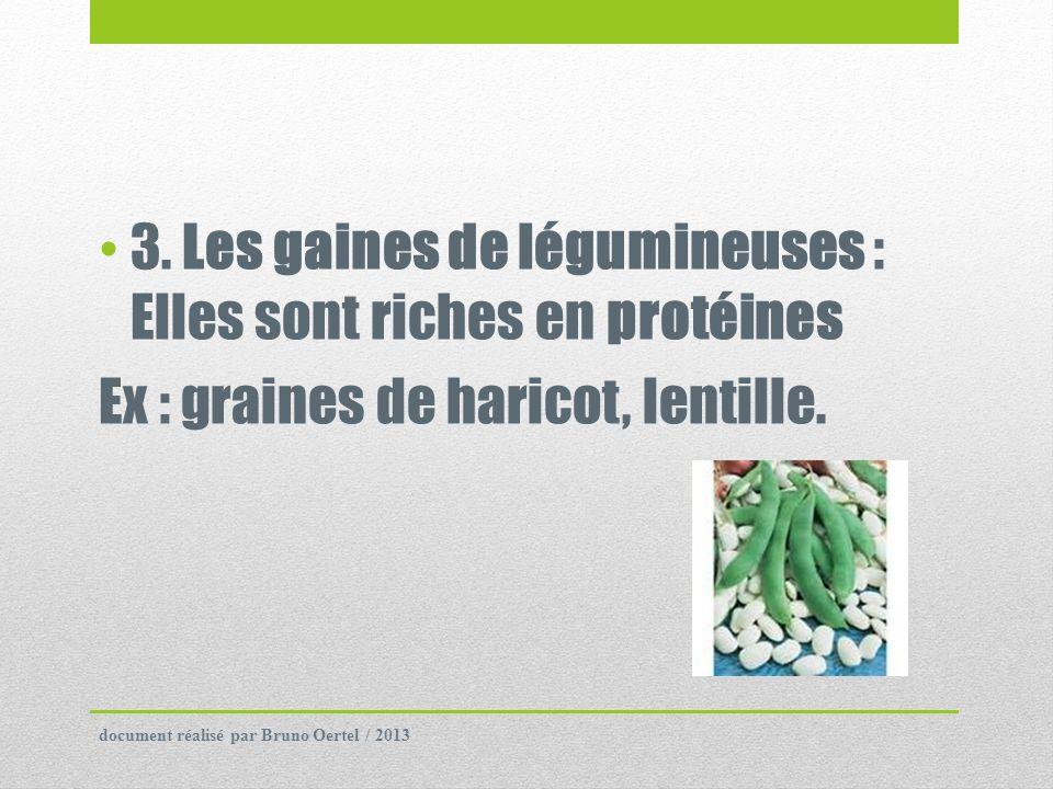 3. Les gaines de légumineuses : Elles sont riches en protéines Ex : graines de haricot, lentille. document réalisé par Bruno Oertel / 2013