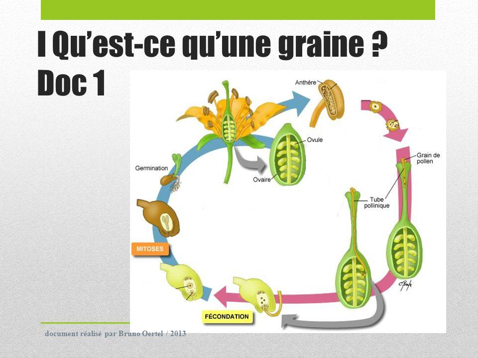 Une graine est le résultat de la reproduction sexuée des plantes à graines.